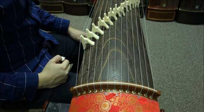 Ziter China