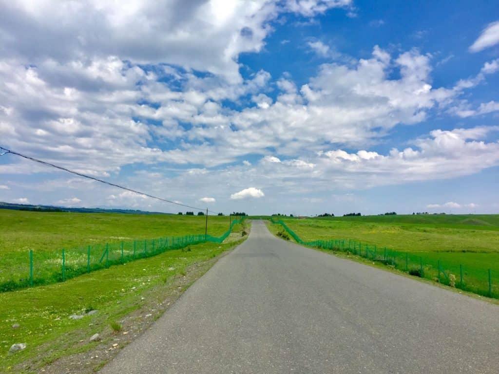 urumqi grassland